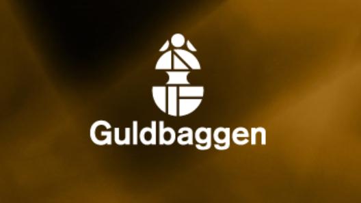 2nd Guldbagge Awards
